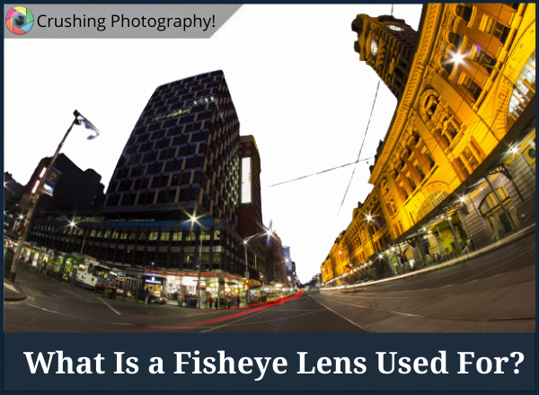 What Is a Fisheye Lens and What Does a Fisheye Lens Do? (Guide)