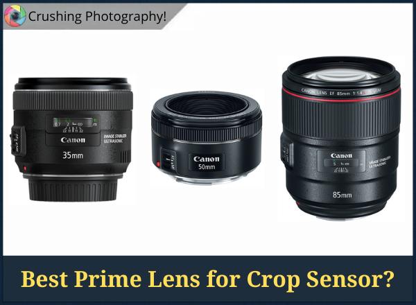 35mm vs 50mm vs 85mm: What Is the Best Prime Lens for Crop Sensor?